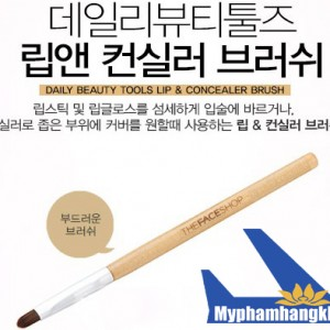 Choi-Lip-&-Concealer-Brush-The-Face-Shop-01